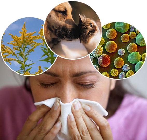 аллергия гастроинтестинальный синдром форум